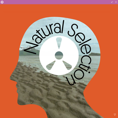 Cover Story: Natural Selection
