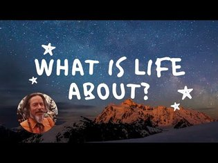 Alan Watts speech - what is life about?