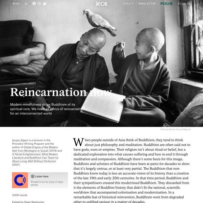 Why modern Buddhists should take reincarnation seriously – Avram Alpert | Aeon Essays