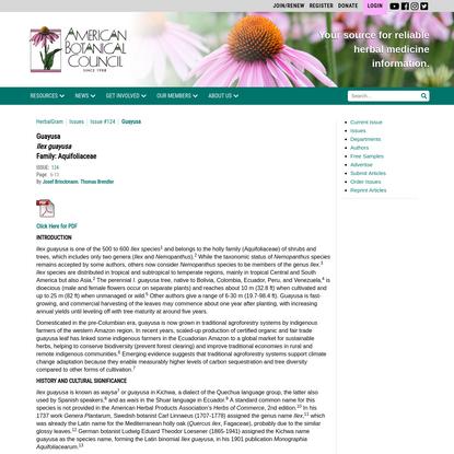 Guayusa - American Botanical Council