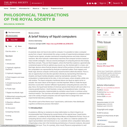 A brief history of liquid computers | Philosophical Transactions of the Royal Society B: Biological Sciences