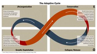 adaptive-cycle.jpeg