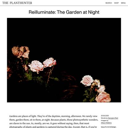 Reilluminate: The Garden at Night - The Planthunter