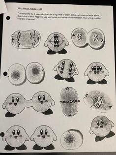 Kirby Mitosis
