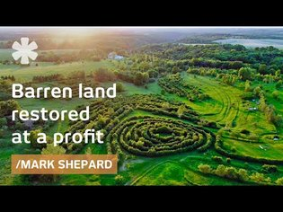 Homestead Paradise: got barren land, boosted it at a profit