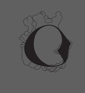 _origins logo test 002