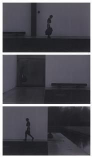 David Claerbout - Sunrise 2009