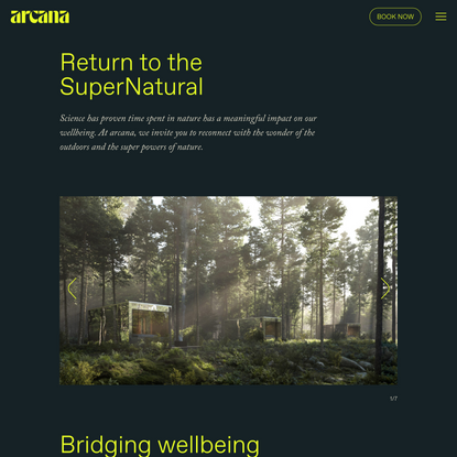 About - Arcana