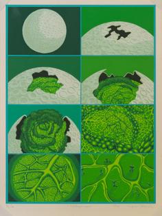 nonaka-hill-tiger-tateishi-cabbage-moon-1979.jpg
