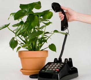 botanicalls-plantcall.jpg