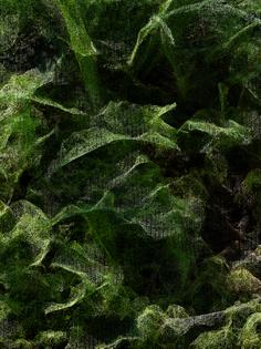 slocums_leaves_17_40-.jpg