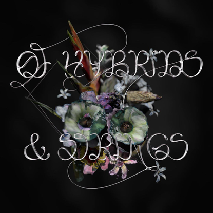 Emilie Vizcano Custom Logotype for 'Of Hybrids and Strings'