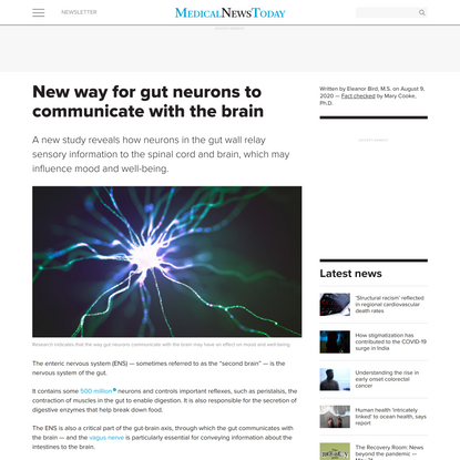 New way for gut neurons to communicate with the brain