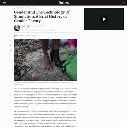 Gender And The Technology Of Simulation: A Brief History of Gender Theory