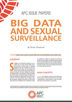 BigDataSexualSurveillance_0.pdf