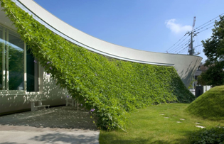 wonderful-house-and-garden-design-of-a-japanese-modern-crib-offer-slanted-vines-for-outdoor-gathering-roof-space-connect-to-the-white-home-accent-ideas-for-modern-japanese-houses-design-ideas-modern-j.jpg