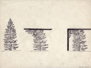 Allan Wexler - Tree intersecting plane (about 1975)