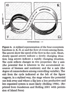 The Adaptive Cycle - C. S. Holling
