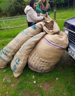 Hay bags filled