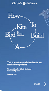How to Build a Bird Kite