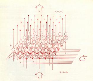 neuron propagation