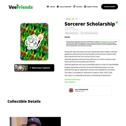 Sorcerer Scholarship   VeeFriends.com