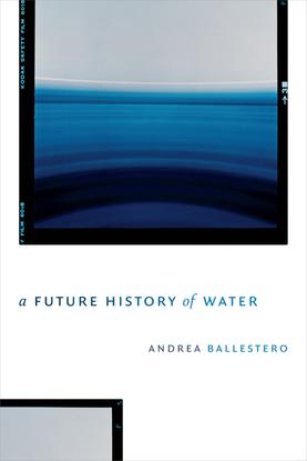 ballestero-2019-afuturehistoryofwater-open-access.pdf
