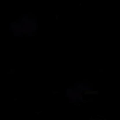 blackroom.html