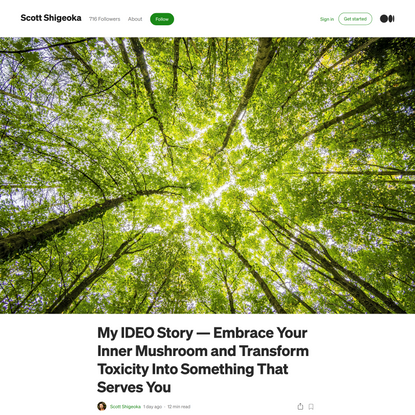 My IDEO Story—Embrace Your Inner Mushroom and Transform Toxicity Into Something That Serves You