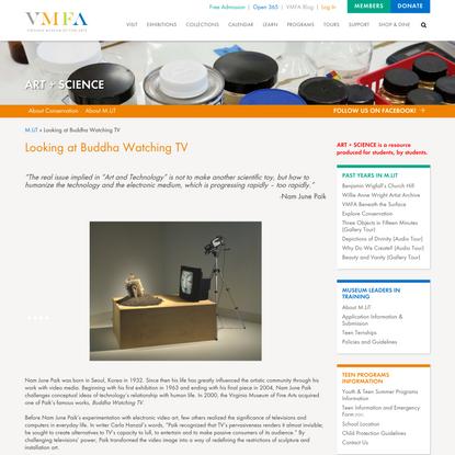 Looking at Buddha Watching TV - Art + Science