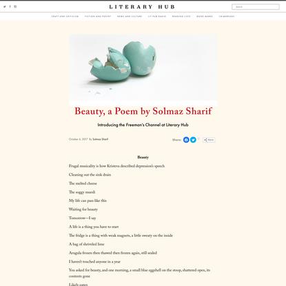 Beauty, a Poem by Solmaz Sharif