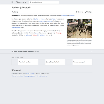Rodhals (plantedel) - Wikipedia, den frie encyklopædi