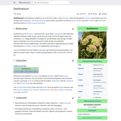 Sankthansurt - Wikipedia, den frie encyklopædi