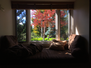 Window day bed
