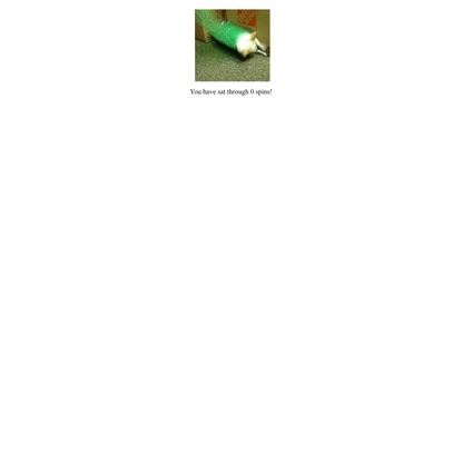 chihuahuaspin.com