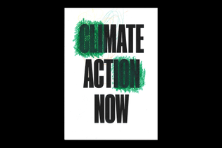 Mate Act Now 2020 poster by Chris and Leo Flack (age 2)