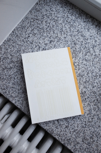 Anina Stolz artist book designed by Daily Dialogue