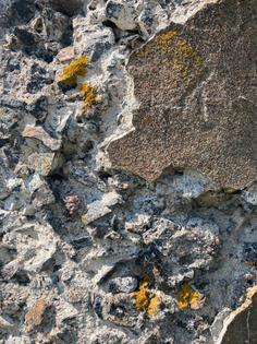 Vallisaari textures