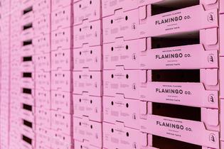 flamingo-containr-lr-6615.png