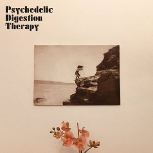 Psychedelic Digestion Therapy, by Psychedelic Digestion Therapy