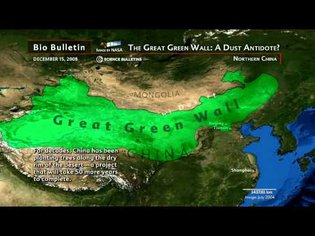 """Science Bulletins: China's """"Great Green Wall""""-A Dust Antidote?"""