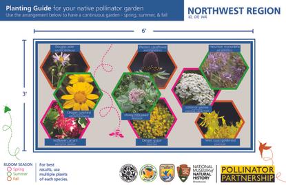 pollinator-garden-cards_northwest-region-1.pdf