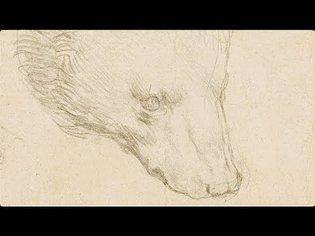 Leonardo da Vinci's Head of a Bear   Christie's