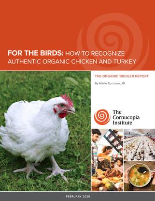 report-poultry-web.pdf