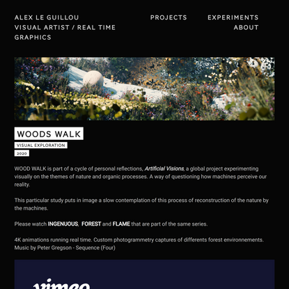 Woods Walk — Alex Le Guillou, visual artist, real time graphics