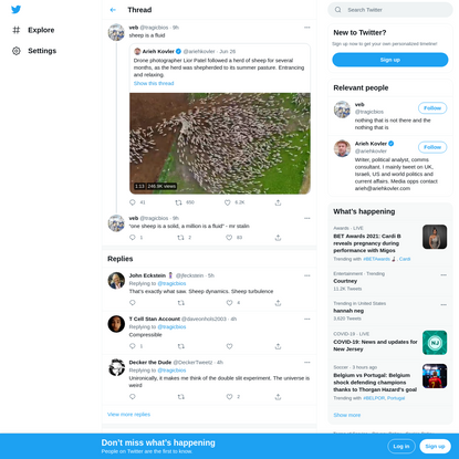 "veb on Twitter: ""sheep is a fluid https://t.co/0DSt24SATS / Twitter"""