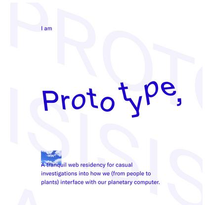 Prototype Web Residency