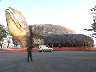 the_giant_turtle_-sea_world-_-_panoramio.jpeg