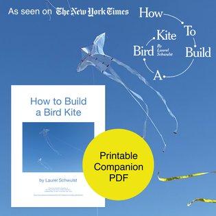 """How to Build a Bird Kite"" Printable Companion PDF"