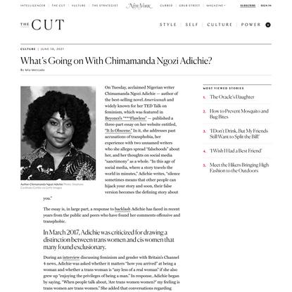 What's Happening With Chimamanda Ngozi Adichie?